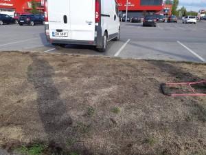 Mullatööd ja muru rajamine Pärnus